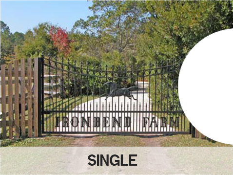 Single Gate Option